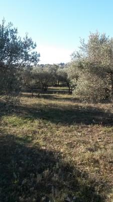 Terrain à batir Lançon de Provence