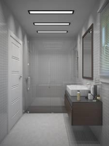 Salle de bain avec décoration moderne pour maison contemporaine dans les BdR